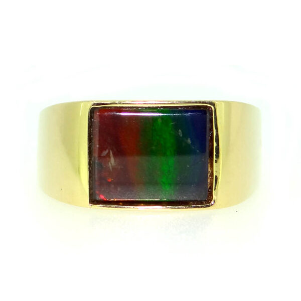 Canadian Ammolite Yellow gold ring